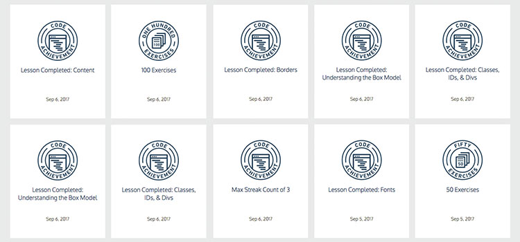 screenshot codecademy badges als Beispiel für Gamification